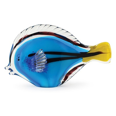 Dynasty gallery for Blue tang fish price