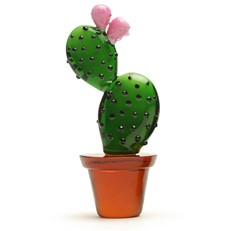 Mini Prickly Pear Cactus