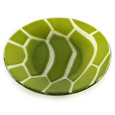 Green Turtle Plate 8""