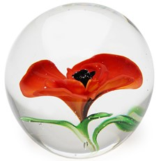 Medium Paperweight - Poppy