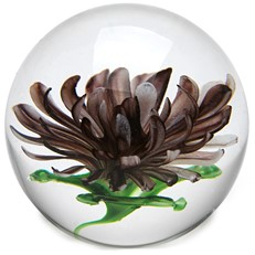 Medium Paperweight - Chrysanthemum Purple Glow