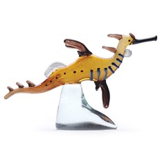 Gallery Weedy Seadragon