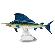 Gallery Sailfish