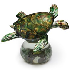 Gallery Sea Turtle