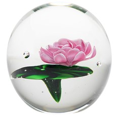 Large Paperweight - Pink Water Lily