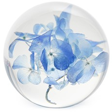 FloraCulture Paperweight - Hydrangea