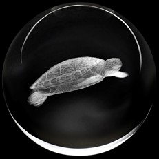 Crystal Paperweight - Sea Turtle